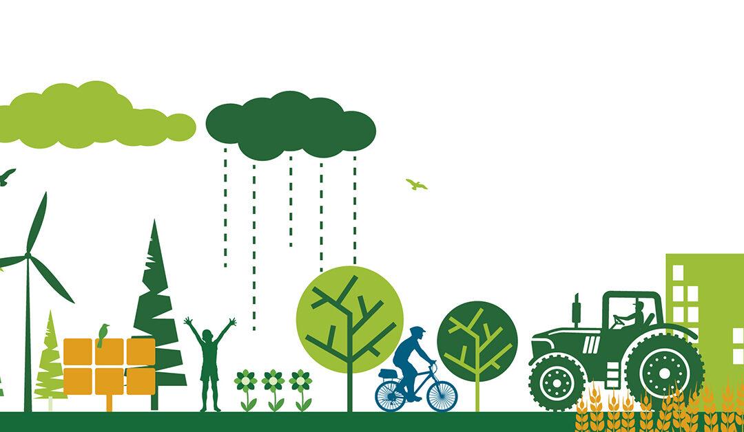 Kuntien ilmastohankkeet -avustushaku avautuu loppuvuodesta
